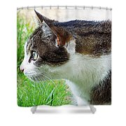 Cat Profile Shower Curtain