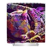 Cat Purr Kitten Pet Fur Feline  Shower Curtain