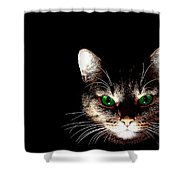 Cat Shadow Shower Curtain