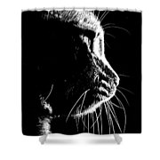 Cat Silhoette Shower Curtain