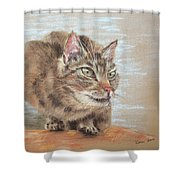Cat Sitting On Lookout Shower Curtain