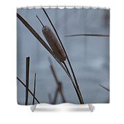 Cat Tail Shower Curtain