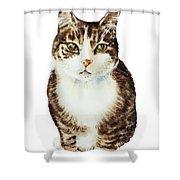 Cat Watercolor Illustration Shower Curtain