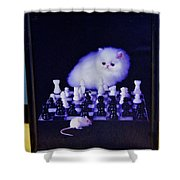 Cat With Chess Board Anbd Mouse Shower Curtain