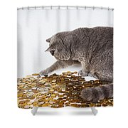 Cat With Coins Shower Curtain