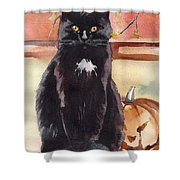 Cat With The Pumpkin Shower Curtain