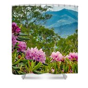 Catawba Rhododendron At The Craggy Shower Curtain