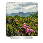 Catawba Rhododendrons Shower Curtain