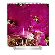 Catcus Flower Shower Curtain