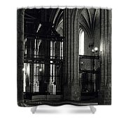 Catedral Shower Curtain
