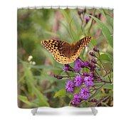 Caterpillar Reborn Shower Curtain