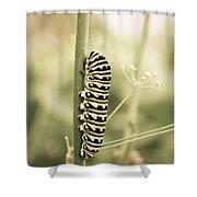 Caterpiller Shower Curtain