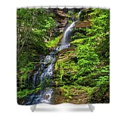 Cathedral Falls 2 - Paint Shower Curtain