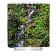 Cathedral Falls 2 Shower Curtain