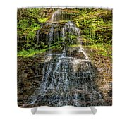 Cathedral Falls 3 Shower Curtain