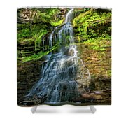 Cathedral Falls - Paint Shower Curtain