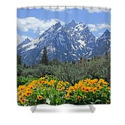 Dm9328-cathedral Group Tetons  Shower Curtain