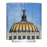 Cathedral Of Art In Mexico Shower Curtain