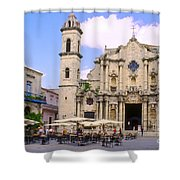 Cathedral Of The Virgin Mary Of The Immaculate Conception Shower Curtain