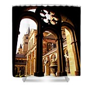 Cathedral Of Trier Window Shower Curtain