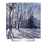 Cathedral Skies Shower Curtain