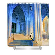 Cathedral Steps Shower Curtain
