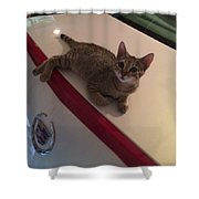 Catilac Shower Curtain