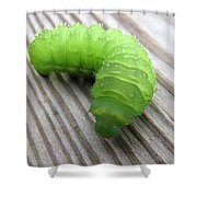 Catipillar 2 Shower Curtain