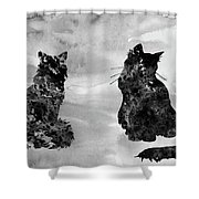 Cats-black Shower Curtain