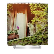 Cats Eye View Shower Curtain