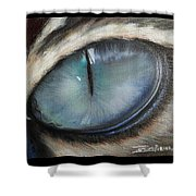 Cat's Eye Shower Curtain