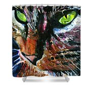 Cats Eyes 11 Shower Curtain