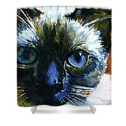 Cats Eyes 13 Shower Curtain