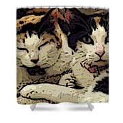 Cats In Bed Shower Curtain by KR Moehr