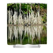 Cattail Reflection Shower Curtain