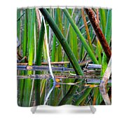 Cattail Reflections Shower Curtain