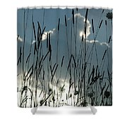 Cattail Sky Shower Curtain
