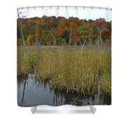Cattails  Shower Curtain