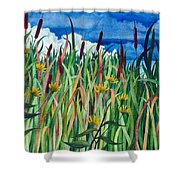 Cattails Shower Curtain by Helen Klebesadel