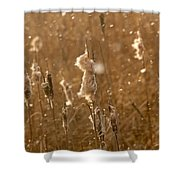 Cattails In Snowstorm 3 Shower Curtain