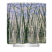 Cattails In The Lake Shower Curtain