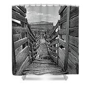 Cattle Chute Shower Curtain