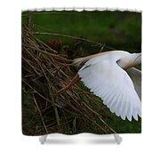Cattle Egret Begins Flight With Nest Materials - Digitalart Shower Curtain
