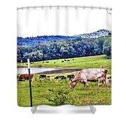 Cattle Farm Shower Curtain
