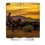 Cattle Drive 41 Shower Curtain