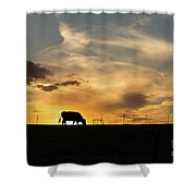 Cattle Sunset Silhouette Shower Curtain