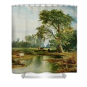 Cattle Watering Shower Curtain by Thomas Moran