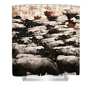 Cattle With Snow On Their Backs Shower Curtain