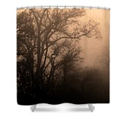 Caught Between Light And Dark Shower Curtain