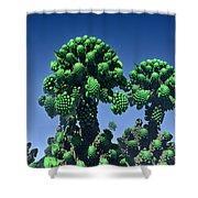 Cauliflower Shower Curtain